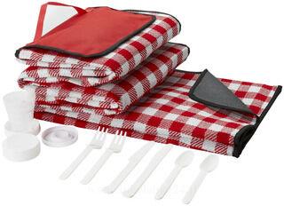 Traditional picnic set
